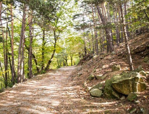 L'Ardèche Run en Rando ou Marche Nordique